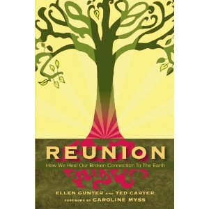 Reunion: How We Heal Our Broken Connection to the Earth